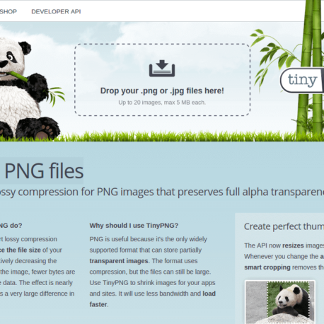 TinyPNG – Compress PNG images while